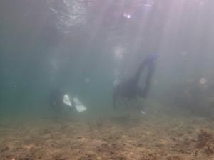 scuba (1)